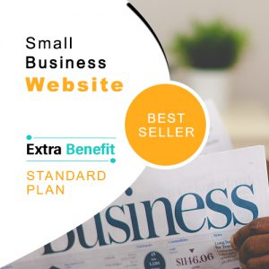 Small Business Web Design with Content Writing