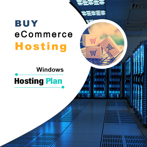 Ecommerce Hosting Plan